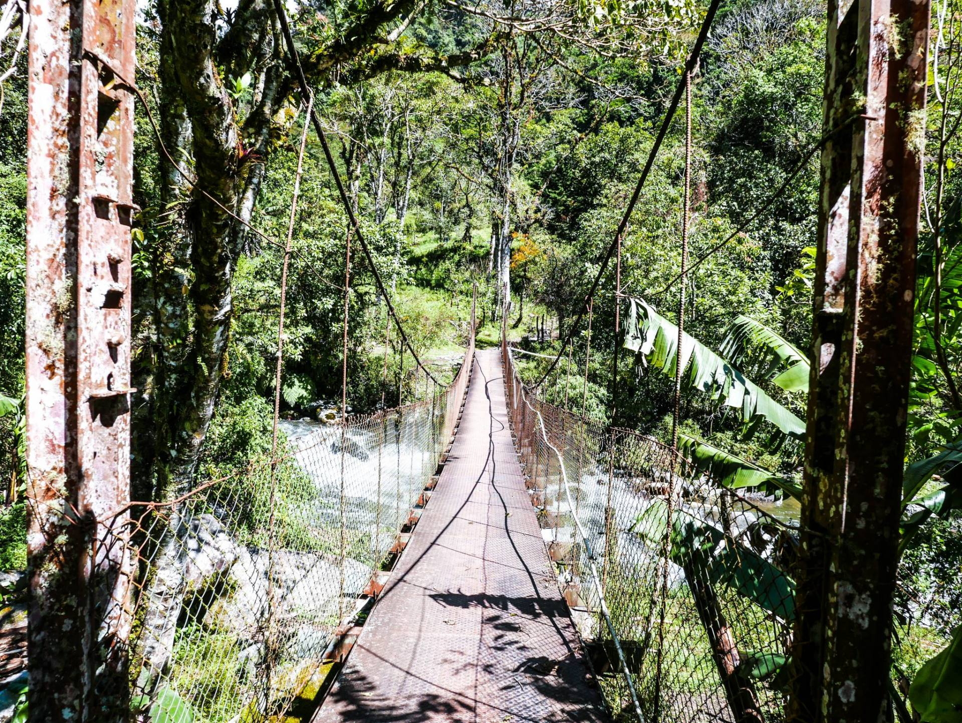 Hiking the Lost Waterfalls trail in Boquete, Panama is an absolutely more. Read this post to find out all about Boquete's best hike!
