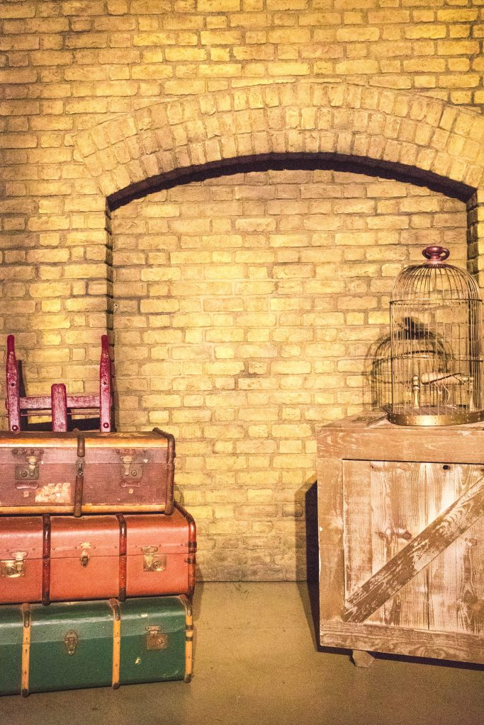 Luggage and Bird Cage King's Cross Warner Bros Harry Potter Studio Tour London