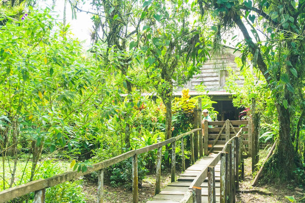 The rustic pathway leading to Don Pedro's in La Fortuna, Costa Rica