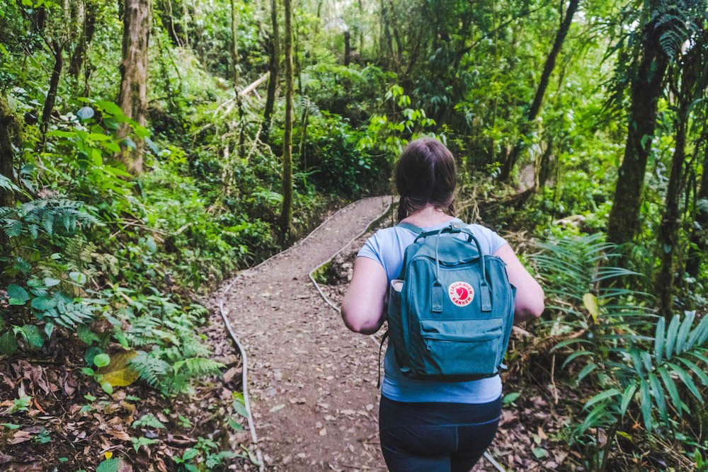 Marvelous Monteverde // 2 Day Monteverde, Costa Rica Itinerary